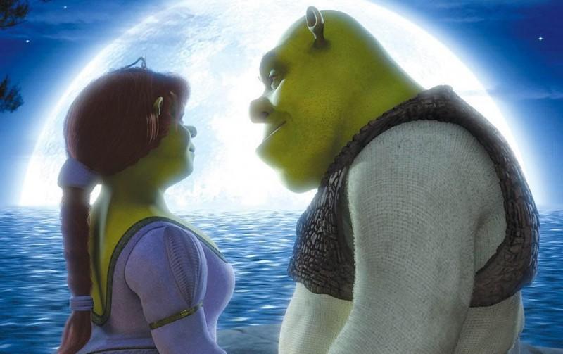 Princess-Fiona-and-her-husband-Shrek-princess-fiona-1460273-1024-768-800x503